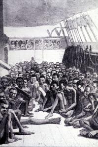 slave cells